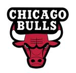 Bulls to build a new practice facility next to the United Center