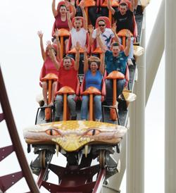 Kings Island saw attendance grow during the 2009 season thanks to the new Diamondback roller coaster.