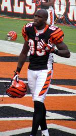 Former Miami Dolphin <strong>Chad</strong> <strong>Johnson</strong> arrested