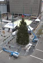 Holiday tree to rise on Fountain Square Saturday