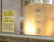 """""""The Big Cheese"""" at Jungle Jim's Eastgate weighs in at more than 7,100 pounds."""