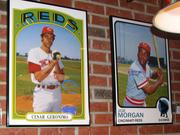 Reproduction baseball cards of some Cincinnati Reds greats.