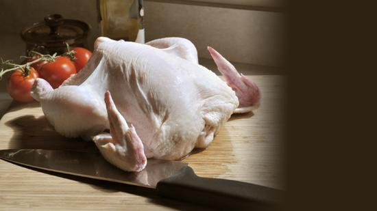 Poultry, meat, milk and other dairy products can be carriers of the salmonella bacteria.