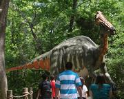 In 2011, the park debuted Dinosaurs Alive, an exhibit featuring 60 animatronic dinosaurs.