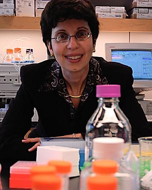 Carol Frankenstein headed BioStart, which closed Feb. 28 after helping to launch 130 firms.