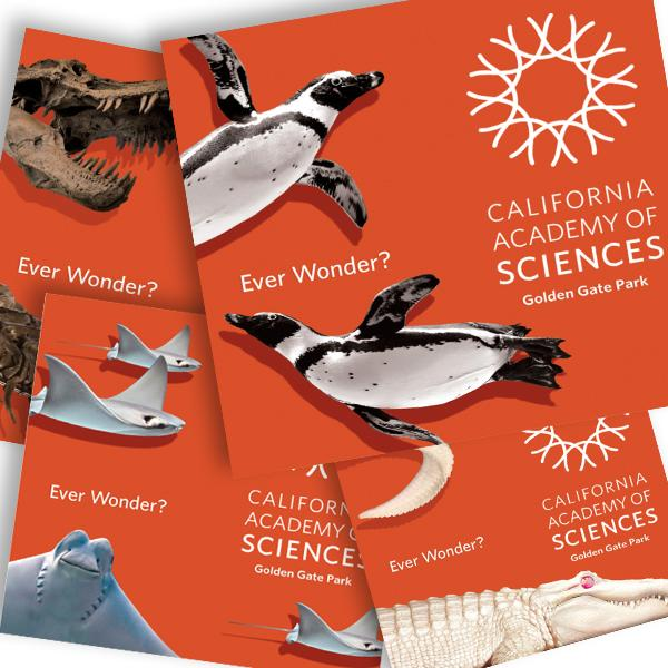 Ron Foth Advertising scored an account in San Francisco for the California Academy of Sciences natural history museum.