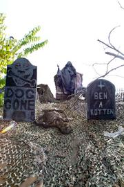 More from the Cemetery.