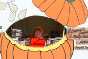 Pumpkins seeds for sale.