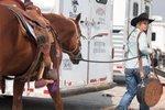 Quarter Horse Congress brings thousands of horses, millions in spending to Columbus
