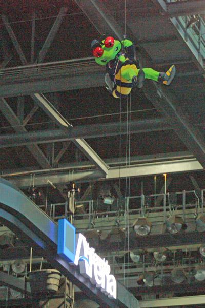 Blue Jackets mascot Stinger has plenty of practice for the rappelling fundraiser.