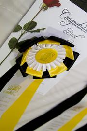 The coveted Best of Show ribbon.