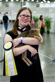 This Abyssinian made it into the top eight as well.