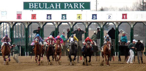 Penn National Gaming Inc. paid $4.6 million for an Austintown property where it plans to build a horse racing track. The company has said it plans to move Beulah Park to that location.