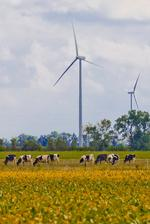 Website calculates wind energy by address