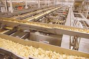 Wyandot runs several processing lines that feed into packing machines where products such as tortilla chips and other snacks are bagged.