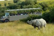 Safaris now are part of corporate entertainment options at the Wilds.
