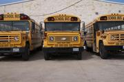 Palmer ISD school buses are lined up and ready to go.