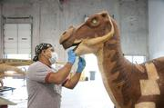 A Muttaburrasaurus gets a check up from Ricardo Tunchez of Billings Productions.