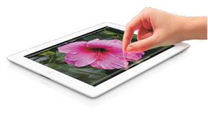 Apple Inc.'s iPad accounted for more than 88 percent early holiday shopping tablet sales.