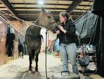 Council members: Stock show overseers fell short on maintenance