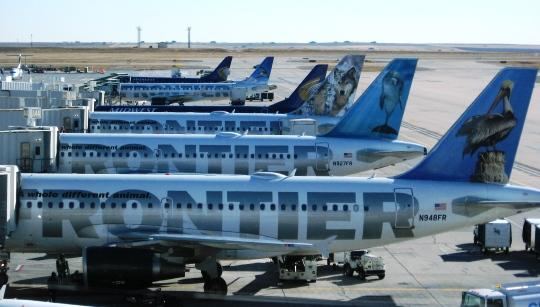 Frontier Airlines jets line up at Denver International Airport's Concourse A.