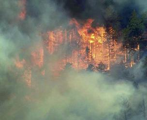 The Waldo Canyon fire near Colorado Springs on June 27. (Photo: CBS4 News)