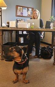 Lauren Cook, senior director of social media and digital strategy at GroundFloor Media with her dog, Reuben.