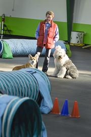 Meg Armstrong, vice president and trust advisor at UMB Bank, with her  dogs Kip and Daisy at the Dog Sports Center where she trains and  competes in dog agility.