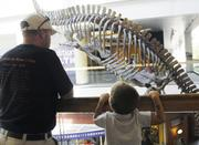 Guests of the Denver Museum of Nature and Science look at the dinosaur skeletons in the lobby from the second floor.