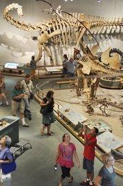 No. 2: Denver Museum of Nature & Science, 1,219,400 attendance.