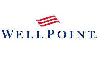 Wellpoint Inc.'s third-quarter net income rose to $691.2 million from $683.2 million a year earlier, but revenue fell to $15.35 billion from $15.4 billion.