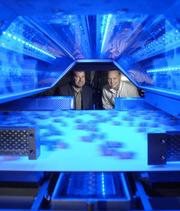 Johan Peeters, plant manager, and Dan Spikard, general manager at BEST USA Inc., are seen through a sorting machine in a demonstration with peanuts. The machine uses cameras and lasers to scan for defects and contaminates such as rocks. March 2011