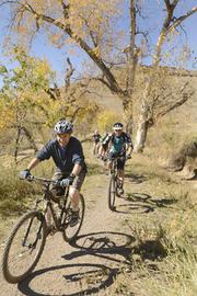 Jeff Reed, purchasing department at Epilog, rides his mountain bike at lunch. The office is located in Golden.