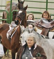 Participants at the National Western Stock Show prep their horses for competition.