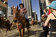 The National Western Stocks Show parade took place in downtown Denver, Thursday, January 5th at noon.