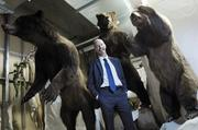 Gary DeBus, director of the Wildlife Experience in the basement with stuffed grizzly bears.June 2012