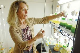 Susan Kunz, CEO and president of BioVantage Resources, works in an algae growing room at her office in Golden. BioVantage is exploring a potential joint venture with Chinese partners.
