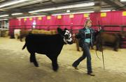 Scenes from past National Western Stock Shows