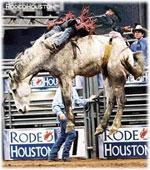Houston Livestock Show and Rodeo teases musical acts