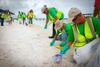 Workers clean up a beach in Pensacola, Fla.