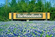 Most active Houston-area residential community: The Woodlands  Annual starts from July 1, 2011, to June 30, 2012: 1,109