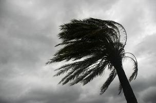 Hurricane Isaac's blast in the Gulf of Mexico pushed oil from the Macondo spill back to the surface, researchers show.