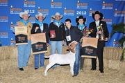 The 2012 Grand Champion Junior Market Goat sold for a world's record of $155,000.