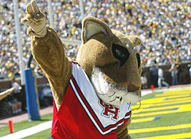The University of Houston spends $7.9 million on football expenses per year. How much of that do you think goes to the mascot's uniform?