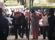 A few Occupy protesters dressed up as pigs outside of the CERAWeek event.