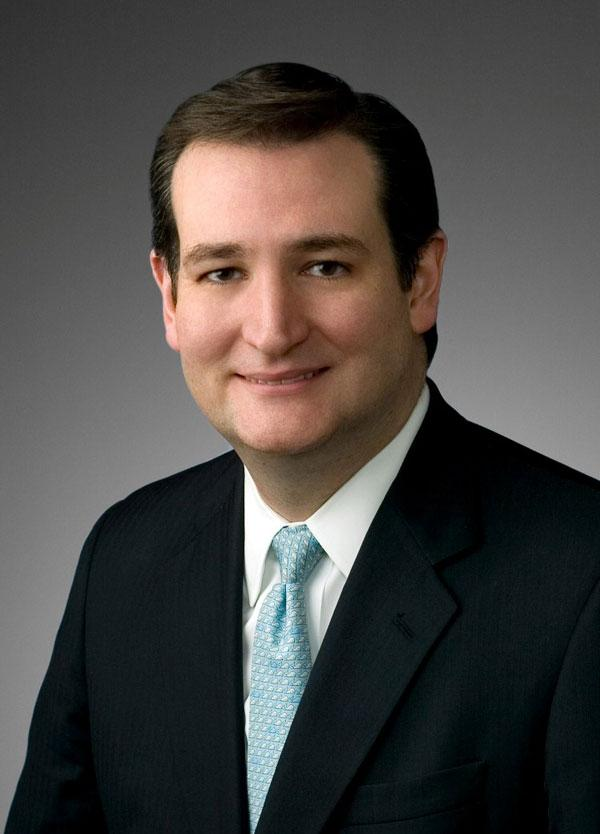 Former Texas Solicitor General Ted Cruz won the Republican primary runoff for an open U.S. Senate seat, defeating Lt. Gov. David Dewhurst.