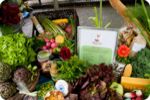 Portland Farmers Market at PSU begins Saturday