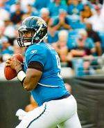 Former Jaguars QB <strong>Garrard</strong> to open gyms in Jacksonville