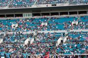 In 2009, the Jaguars were known around the NFL for being blacked out due to low ticket sales.