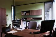 Office include interior windows and a view and are decorated with native plants from the company's rooftop garden.